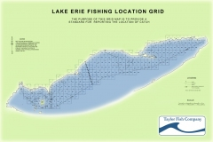 taylor-fish-from-our-nets-fishing-grid